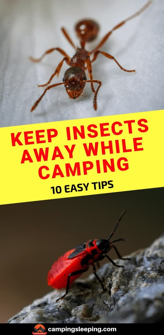 Keep insects away while camping